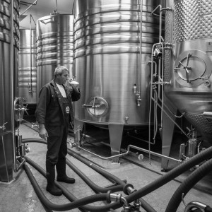 Brauerei Kneitinger